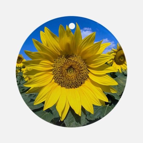 Sunflowers Round Ornament
