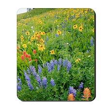 Summer mountain flowers Mousepad
