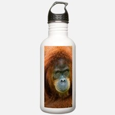 Asis Drink Bottle