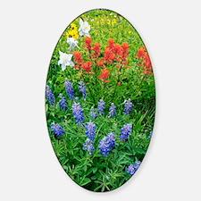 Summer mountain flowers Sticker (Oval)