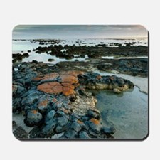 Stromatolites in Australia Mousepad