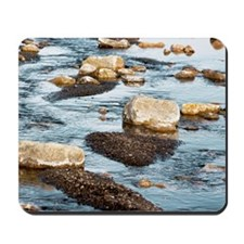 Stones and fine sediment in a creek Mousepad