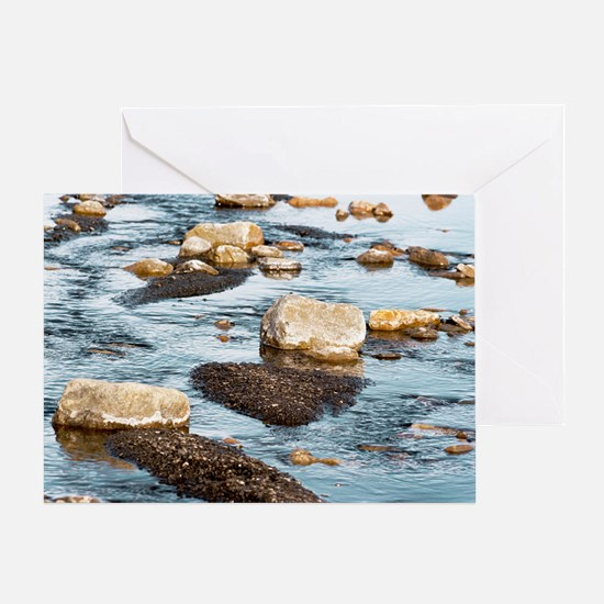 Stones and fine sediment in a creek Greeting Card
