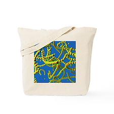 Streptococcus bacteria Tote Bag
