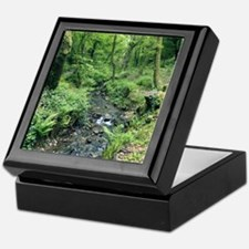Stream and woodland in Devon Keepsake Box