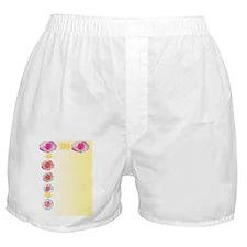 Stem cell development, artwork Boxer Shorts