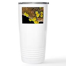 Staphylococcus aureus bacteria, Travel Mug