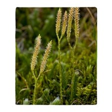Stag's-horn Clubmoss (Lycopodium) Throw Blanket