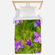 Spreading Bellflower (Campanula patula) Twin Duvet
