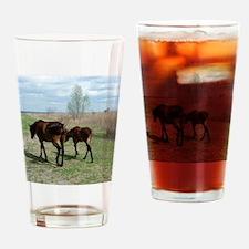 Payne's Prairie Wild Horses Minacop Drinking Glass