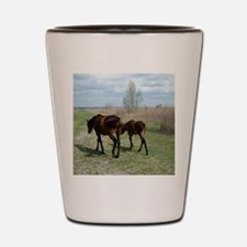 Payne's Prairie Wild Horses Minacopy Fl Shot Glass