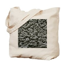 Spores of Bacillus anthracis bacteria Tote Bag