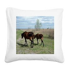 Payne's Prairie Wild Horses M Square Canvas Pillow