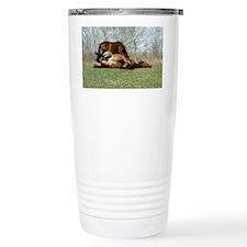 Payne's Prairie Wild Horses Min Travel Mug