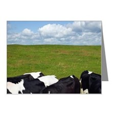 Cows in a pasture. Note Cards (Pk of 10)