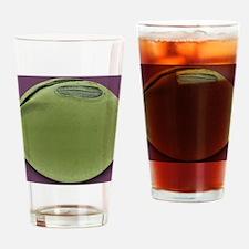 Soya bean, SEM Drinking Glass
