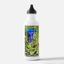 Southern gentian (Gent Water Bottle