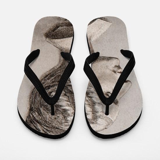 Sophie Germain (1776- 1831) Flip Flops