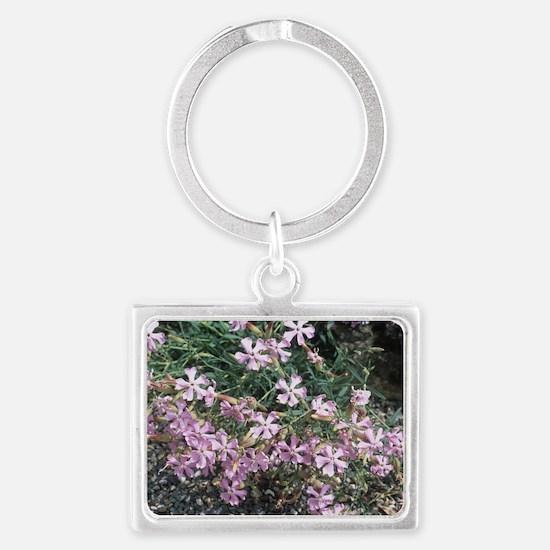 Soapwort (Saponaria sicula inte Landscape Keychain