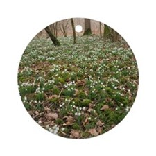 Snowdrops (Galanthus) in woodland Round Ornament