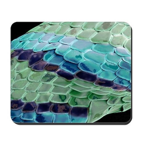 Snake skin, SEM Mousepad