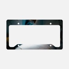 Slipped disc microendoscopy s License Plate Holder