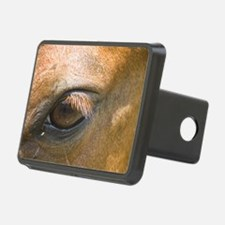 Eye of the Gelding Hitch Cover