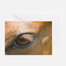 Eye of the Gelding Greeting Card