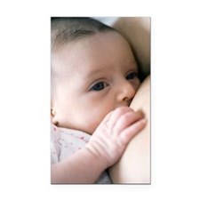 Six week old baby girl breast Rectangle Car Magnet