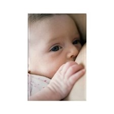 Six week old baby girl breastfeed Rectangle Magnet