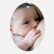 Six week old baby girl breastfeeding Oval Ornament