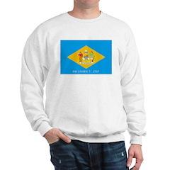 Delaware Flag Sweatshirt
