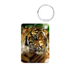Siberian Tiger Keychains