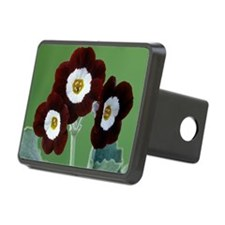 Show auricula 'Old Red Elv Hitch Cover