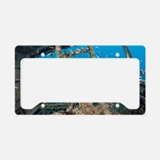 Shipwreck and fish License Plate Holder