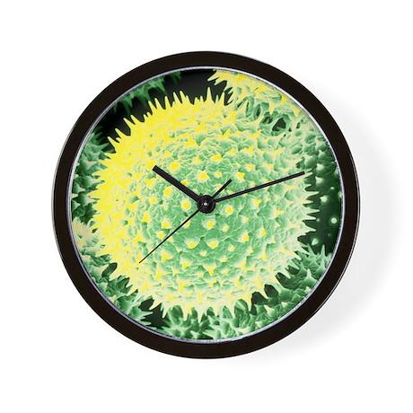 SEM of pollen grains of Common Mallow Wall Clock