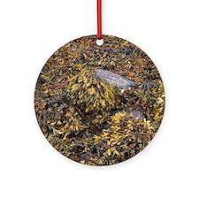 Seaweed Round Ornament