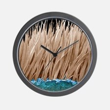 Seal fur, SEM Wall Clock