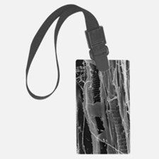 SEM of dry rot in plywood Luggage Tag