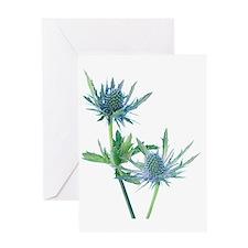 Sea holly (Eryngium sp.) Greeting Card