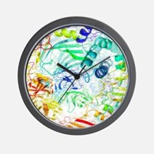 Secondary structure of proteins, artwor Wall Clock