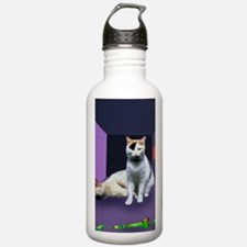 Schrodinger's cat expe Water Bottle