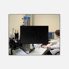 Scanning electron microscopy Picture Frame
