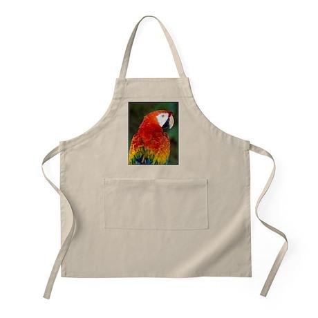 Scarlet macaw Apron