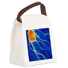 Salmonella enteritidis bacterium Canvas Lunch Bag