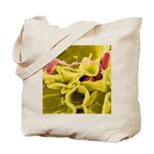 Salmonella bacterial infection, SEM Tote Bag