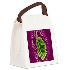 S. maltophilia bacteria, TEM Canvas Lunch Bag
