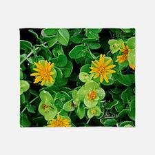 Salad Bush (Didelta spinosa) Throw Blanket