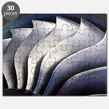S-curve fan blades Puzzle