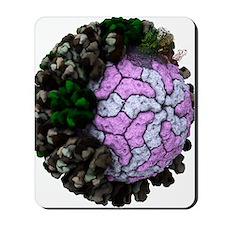 Rotavirus particle, artwork Mousepad